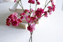 Flowering / All things in bloom.
