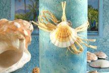 We love shells!