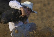 Things Cowboys Do ;)