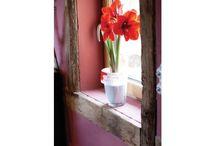 Peintures Enduits Maison