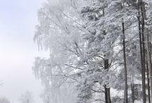 Winter landscapes / Вдохновляющие зимние пейзажи.