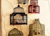 Vogelkooitjes
