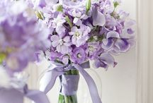 Flower arrangments