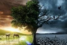 naturaleza- medioambiente