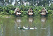 Dusun Bambu / Garden