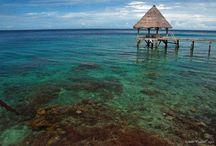 Our idilic island...Fiji / Home