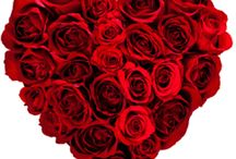 Valentine's Day with Lola / #ValentinesLola