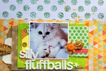 Scrapbook Layout Ideas / All things scrapbooking / by Cari Troyer