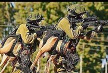 Navy Seals!