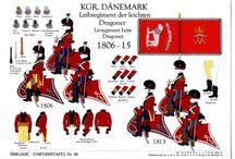 scandinavian napoleonic