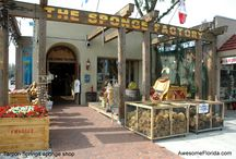 Things to do / Things to do in Tarpon Springs