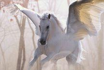 Pegasus Wisdom / My oldest and dearest mythic companion, Pegasus