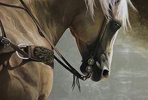 Horse : Mary Ross Buchholz