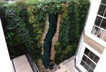 Gardens, Vertical / Living walls, Moss walls and other green vertical solutions