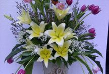 Rangkaian Pernikahan / Bebagai macam kebutuhuan rangkaian bunga atau rangkaian seni bercita rasa tinggi untuk menciptakan suasana pernikahan yang indah