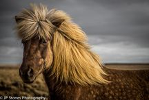 Iceland Travel Photography by JP Stones / From JP Stones at www.jpstoneshotography.com