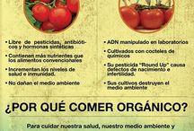 nutrición y dietetica