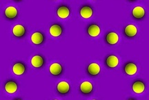 Optical Illusions / An optical illusion (also called a visual illusion) is characterized by visually perceived images that differ from objective reality. The information gathered by the eye is processed in the brain to give a perception that does not tally with a physical measurement of the stimulus source.
