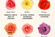 flowers meanings