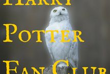 Harry Potter Fan Club / Chat over the intricacies of squibs, dark marks, dementors, animagi, chocolate frog cards, and more at this fan club for people who love the Harry Potter series.  Both movies and books will be discussed, and in roughly chronological order (movie and book 1 at the first meeting, then books and movies 2 and 3 at the next meetings, etc.) For schedule please see www.wrightlibrary.org/harrypotterfanclub
