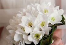 bouquets mariee