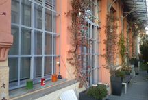I LOFT DI VIA TUCIDIDE / LI CHIAMANO LOFT ALL'AMERICANA, UNITÀ ABITATIVE AD UN PIANO, RICAVATE DA UN'EX FABBRICA.  I primi di questi appartamenti sono spuntati nel 2002. Siamo nel quartiere Ortica a Milano, nell'ex area industriale Richard-Ginori che, sino al 1986, è stata la casa della ceramica e delle porcellane.