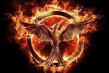Hunger Games/Catching Fire/Mockingjay