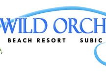 Wild Orchid Beach Resort Subic Bay / Discover the flawless hospitality of Subic Bay's newest premier hotel. Keeping with the tradition of the Wild Orchid Group's attention to attentiveness and gracious service. http://www.wildorchidsubic.com/