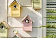 birde house