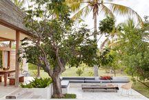 Ideen für Mediterranen Garten