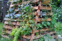 Zahrada / Dobré nápady