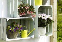 caixotes para plantas