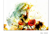 Kristina Jadronova / Graphic Design, Brand Identity, Illustration