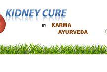 Ayurvedic medicine for kidney diseases ||Karma Ayurveda ||