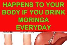 Moringa drinks