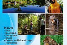 Puerto Maldonado Zona Reservada Manu