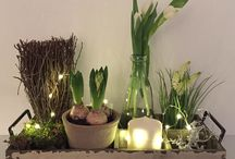 Spring Decor / Decoration Ideas for Spring