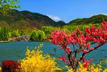Magical Kashmir Tour packages / Flamingo Travel Group, Magical Kashmir Tour packages