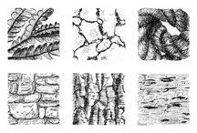 Point, Line, Texture