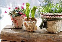 Succulent pots with textile