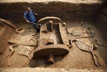 Archaeology / by Tatjana Plitt
