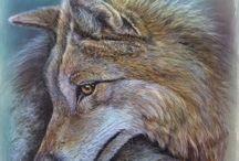 Kurti / www.verartet.de Wolf  Acryl on Canvas 40 x 40 cm