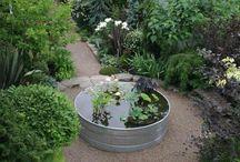 Min Dahlia trädgård