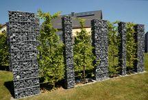 Muri pietra e viti