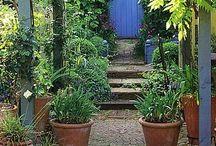 Garden Cool / by Paul Pruneau