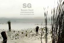 Cinemagraphs by Susan Gast