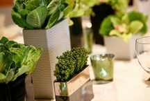 table settings / flower arrangements