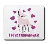 LOVE My Chihuahuas