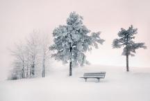 Winter Snow / by Kenji 08