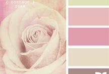 Palettes - colour me crazy